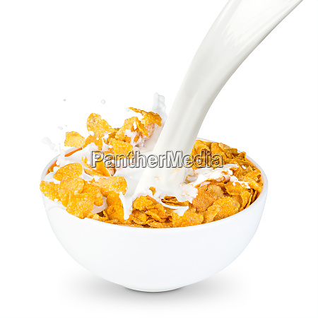 cornflakes milk splash
