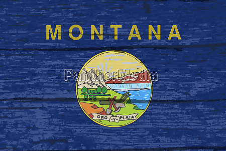 montana state flag on old timber