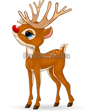little deer with a red nose