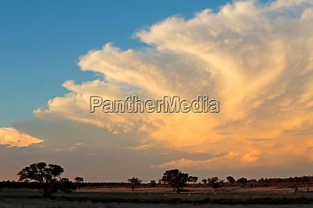 kalahari desert cloudscape