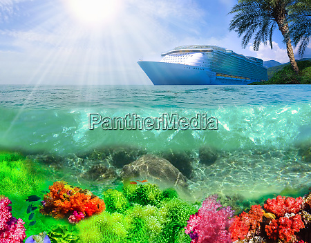 collage of underwater coral reef