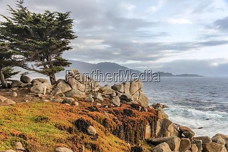 17 mile drive coastal views