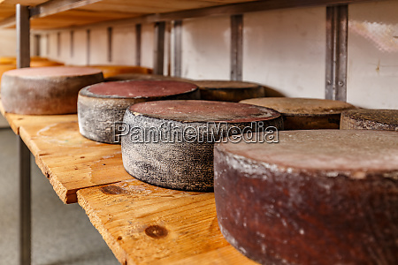 wheels of aging cheese