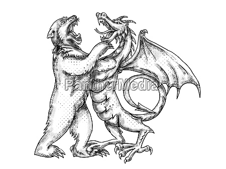 grizzly bear fighting chinese dragon