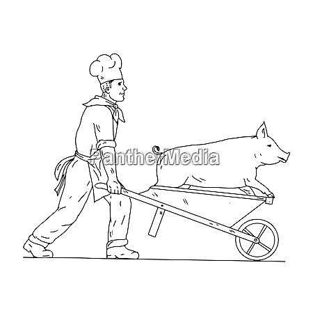 chef with wheelbarrow and pig drawing