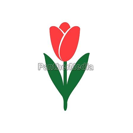 tulip icon bright colors