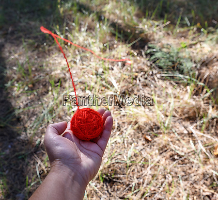 round red wool ball lies in