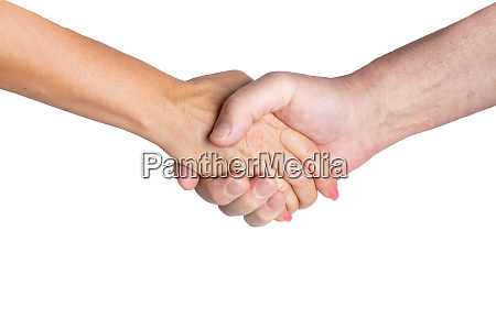 business success concept a handshake from