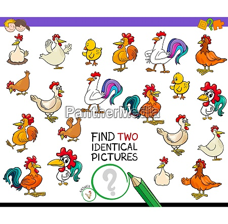 find two identical chicken pictures game