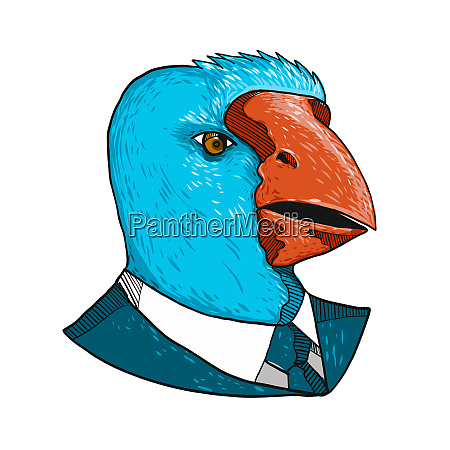 south island takahe in business suit