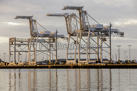 shipping container cranes in the port