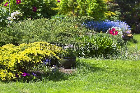 beautiful spring garden beauty of nature