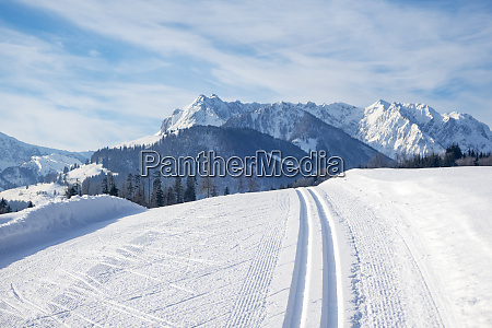 cross country ski track and the
