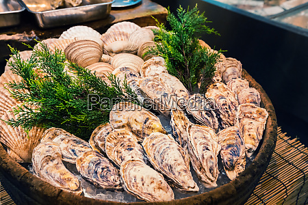 fresh oyster on ice as street