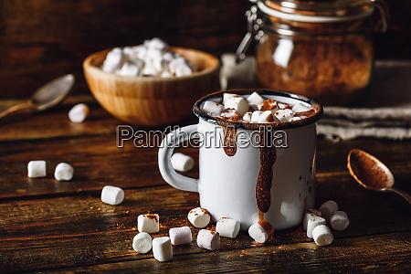 mug of cocoa with marshmallows