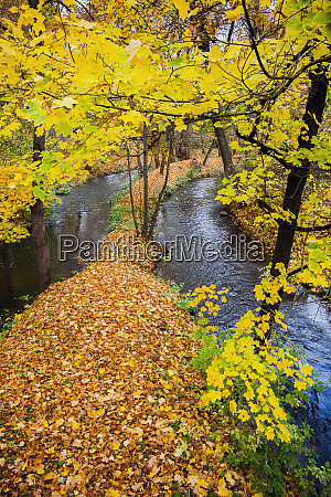 autumn in the castle park of