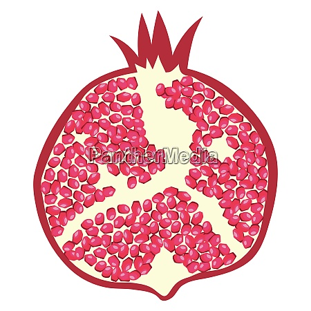 flat design icon of pomegranate in