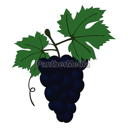 flat design icon of grape in
