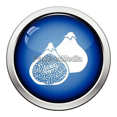 icon of fig fruit glossy button