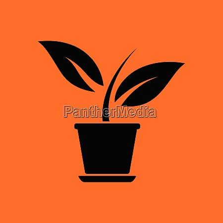 plant in flower pot icon orange