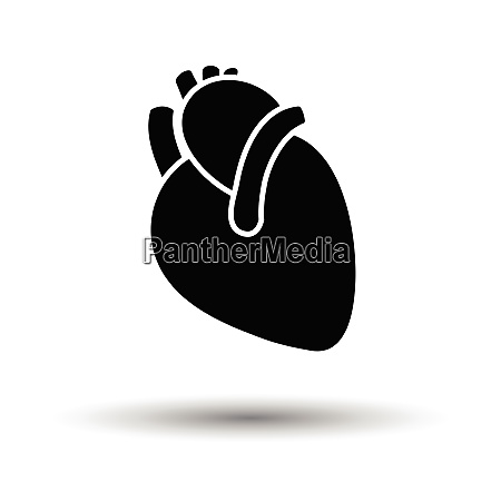 human heart icon white background with