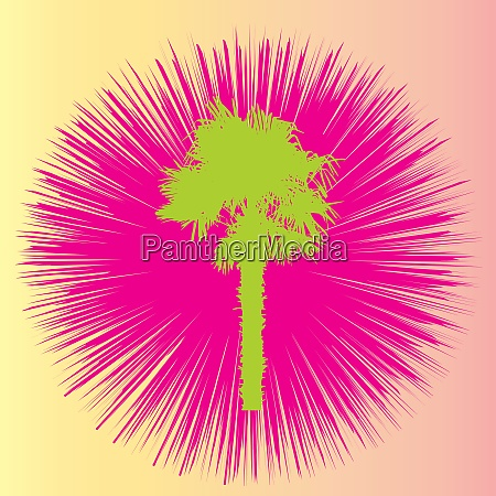silhouette of palm trees vector illustration