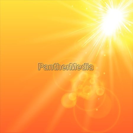 summer orange background with sunlight vector