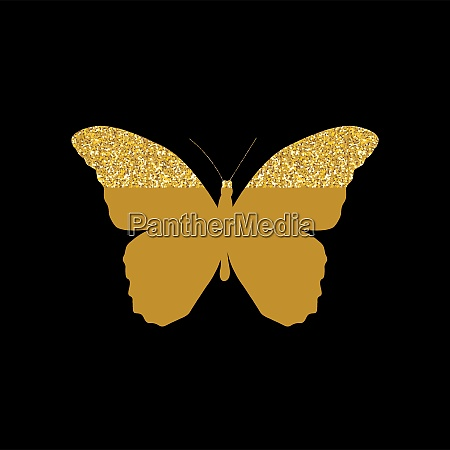 gold butterfly icon silhouette vector illustration