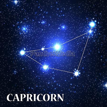 symbol capricorn zodiac sign vector illustration