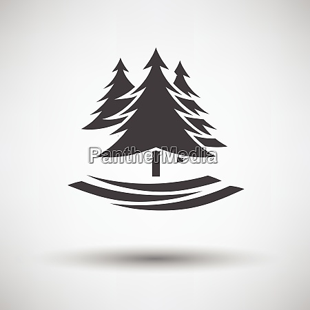 fir forest icon on gray