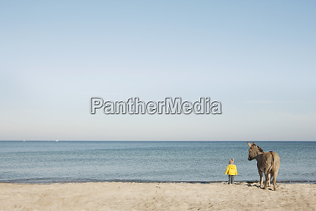 girl and donkey at beach wiendorf