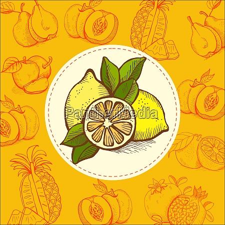 lemon lime fruit vector illustration the