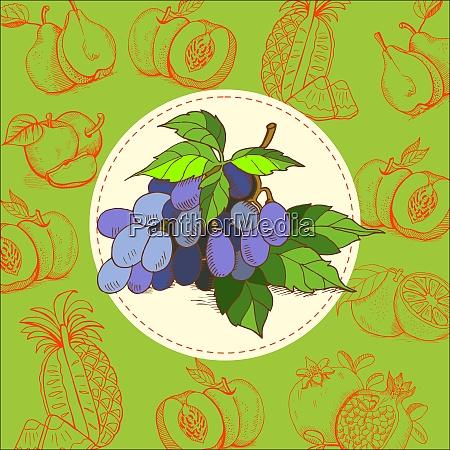 grapes blue grapes the grape juice
