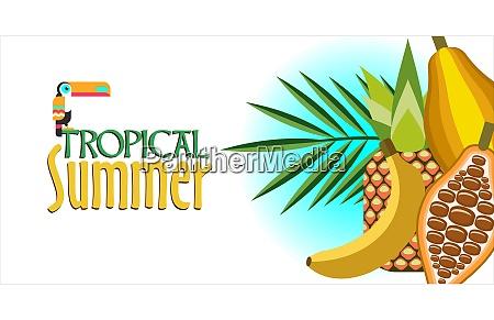 vector illustration tropical plants cocoa banana