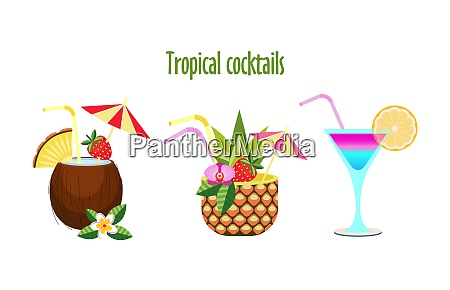 set of tropical cocktails vector illustration
