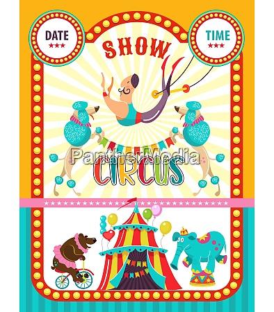 circus artist circus animals poster of