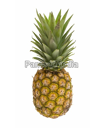 mini pineapples with straw isolated on