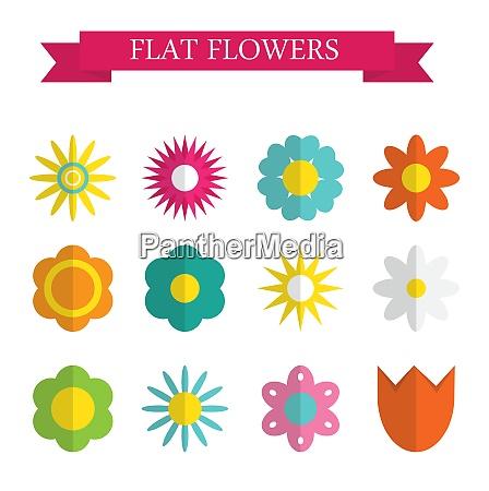 paper trendy flat flower set vector