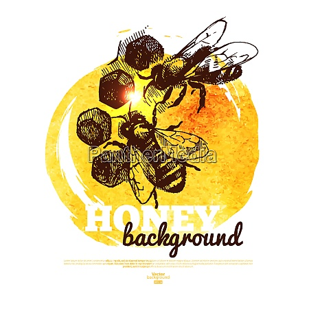 honey banner with hand drawn sketch