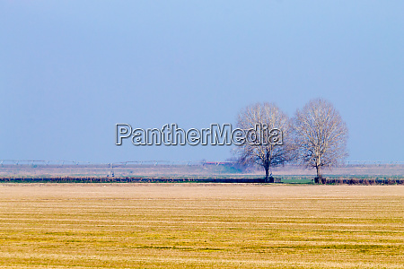 rural italian landscape from po river