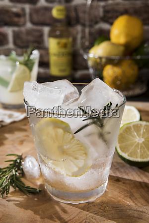 glass of gin tonic with lemon