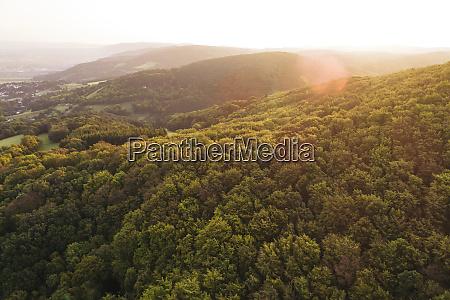 austria lower austria vienna woods biosphere
