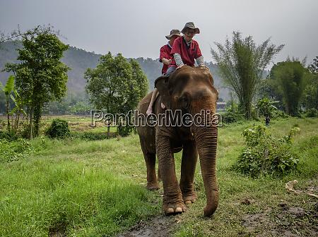 thailand chiang mai province ran tong