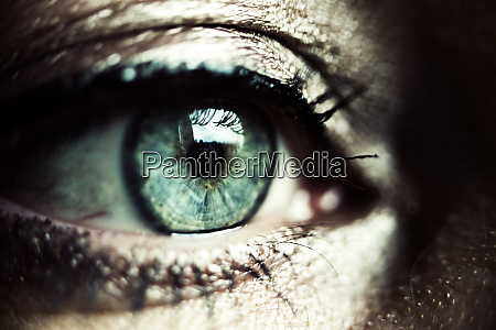 green eye of made up woman