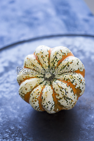 ornamental pumpkin