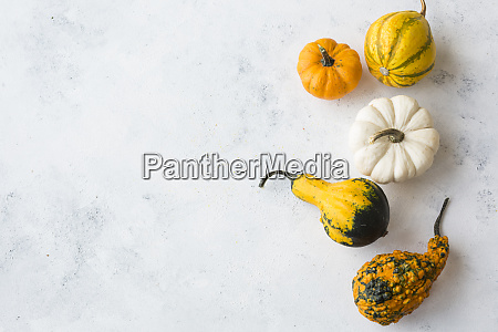 ornamental pumpkins on white wood