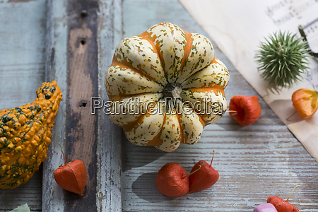autumnal decoration with two ornamental pumpkins