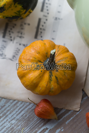 autumnal decoration with ornamental pumpkins and
