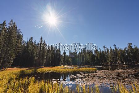usa california yosemite national park lake