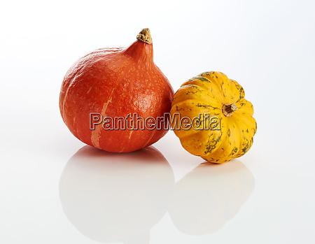 hokkaido and yellow ornamental pumpkin on
